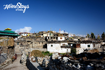 Nako Village_Nako Homestay