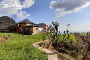 Breathe fresh air while living at Naddi Homestay