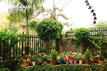 Garden_Dera Bassi Homestay_Chandigarh