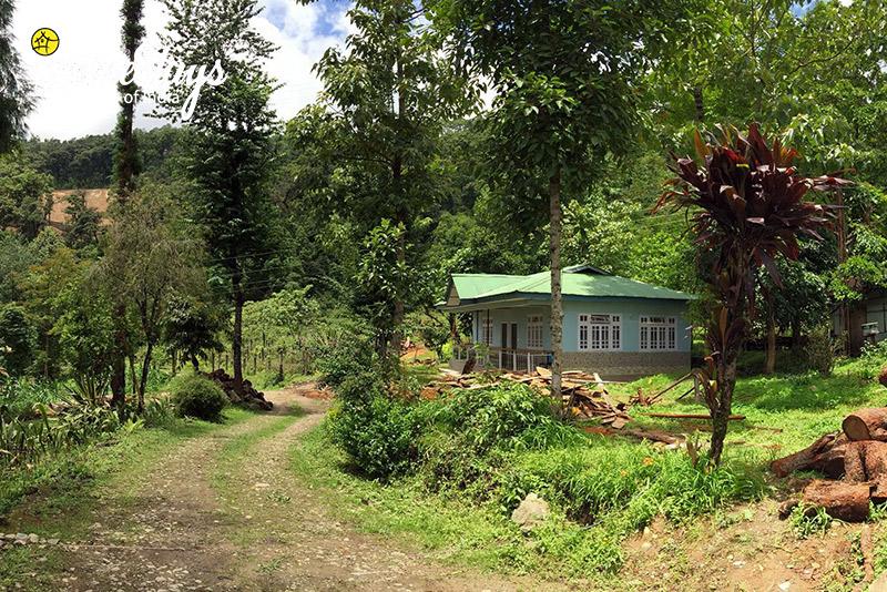 Destination ideas for valentine's trip Temi Sikkim