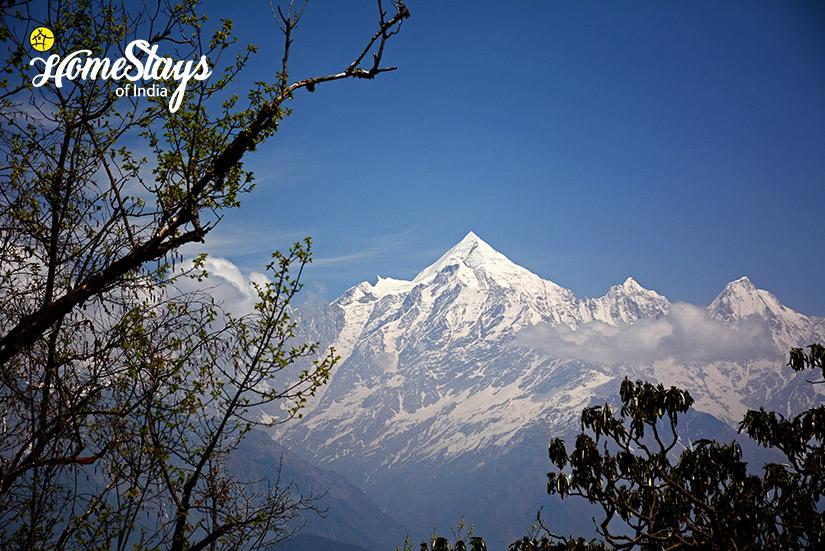 Munsiyari_Kumaon-Uttarakhand