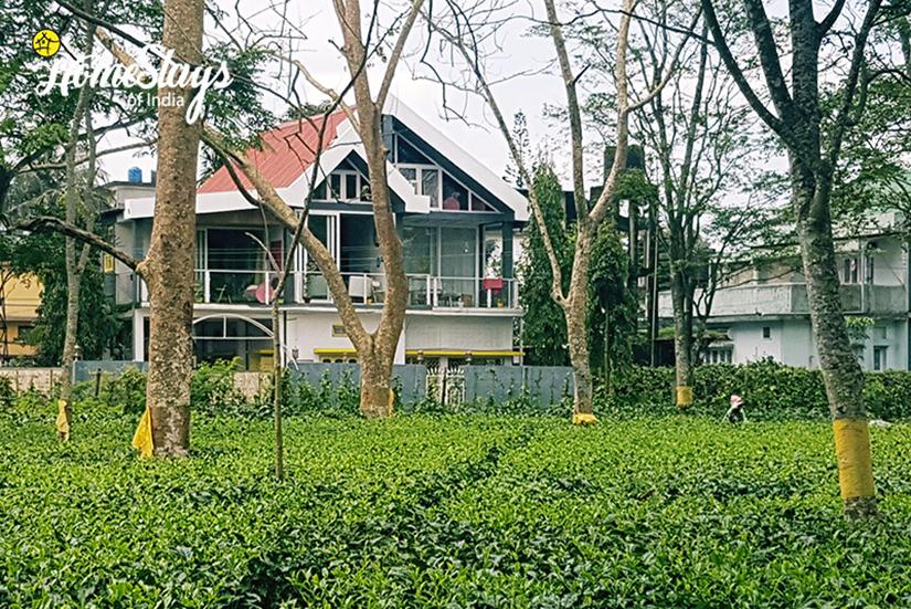 Dibrugarh-Homestay-Assam