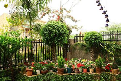 Garden_Dera-Bassi-Homestay