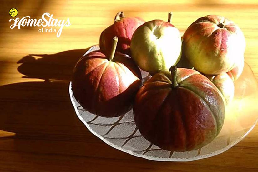 Guava_Pedong Homestay