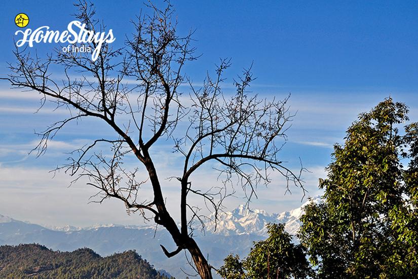Himalayan-Range_Dalar-Homestay_Binsar