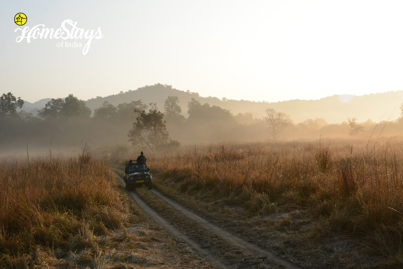 Jeep Safari_Ramnagar-Homestay-Corbett