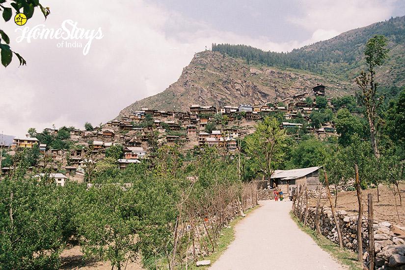 Kamru-Village_Sangla-Homestay