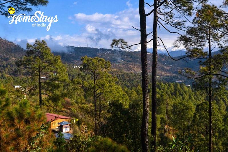 Landscape_Chaukori-Homestay