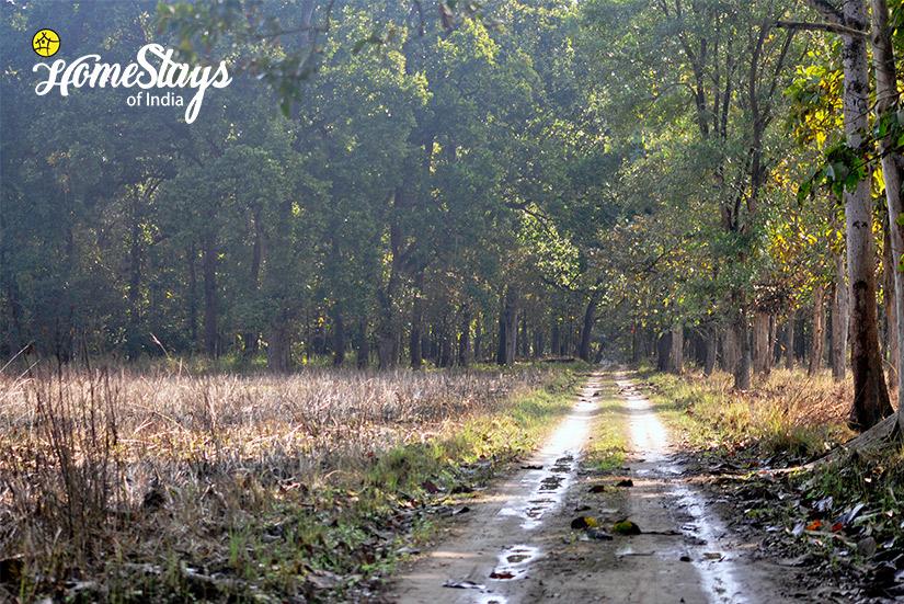 Landscape_Ramnagar-Homestay-Corbett