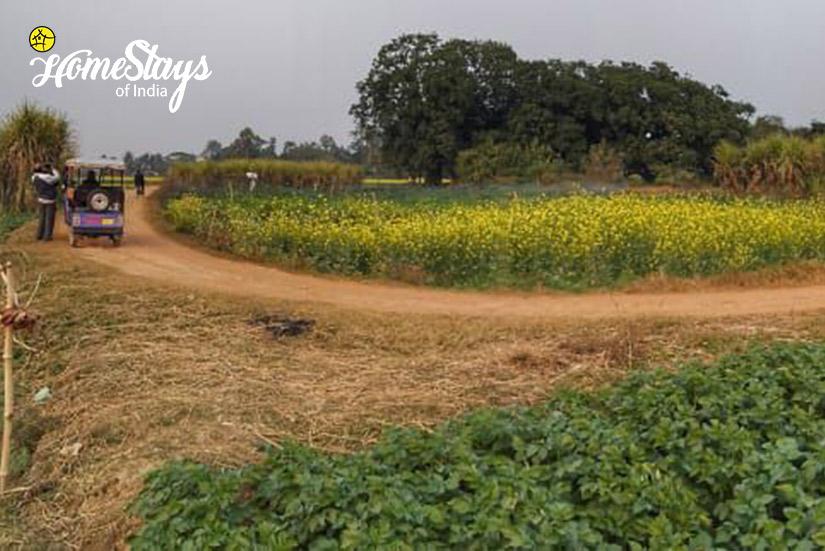 Landscape_Singi Homestay