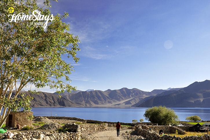 Morning Walk-Spangmik Homestay-Ladakh