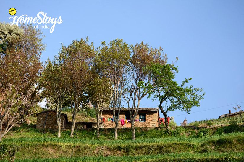 Neiboughrhood_Kanarkha-Homestay-Padampuri