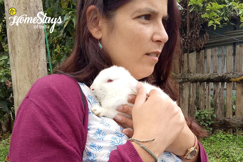 Rabbit_Temi-Hertitage-Homestay-Namchi