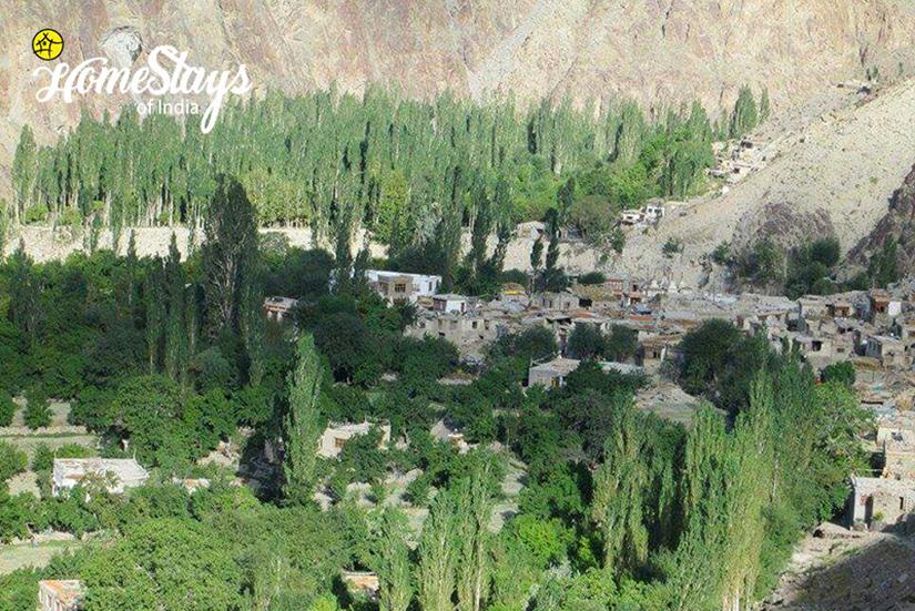 Summer_Achinathang Homestay-Ladakh