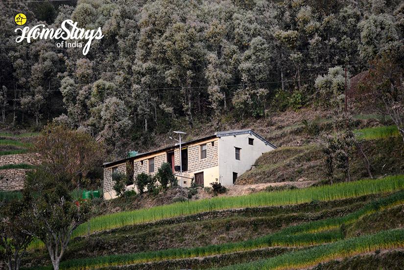 The-Farm_Kanarkha-Homestay-Padampuri