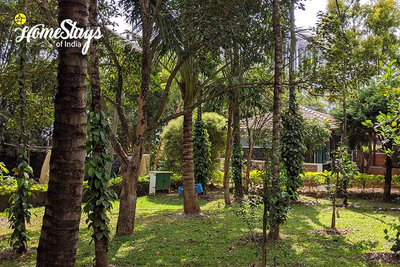 The-Orchard_Mugathihalli-Homestay-Chikmagalure