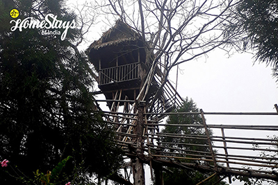 The Tree House_Mawlynnong Homestay
