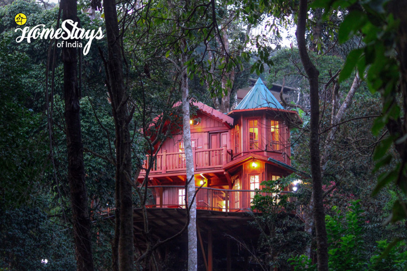 The-TreeHouse_Katakeri-Homestay-Coorg