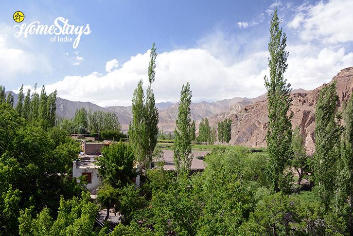 The-Village-Alchi-Homestay-Ladakh