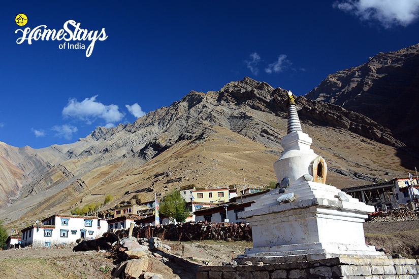 The-Village_Mudh-Homestay-Spiti