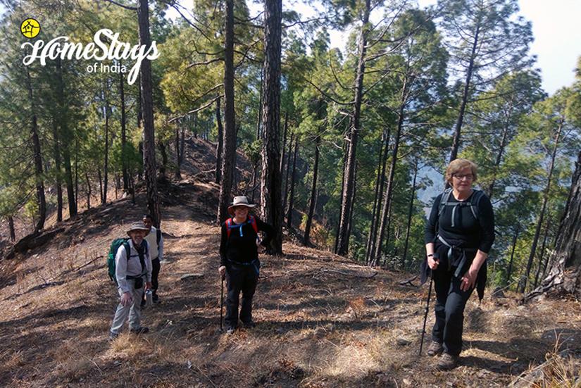 Trekking_Dalar-Homestay_Binsar