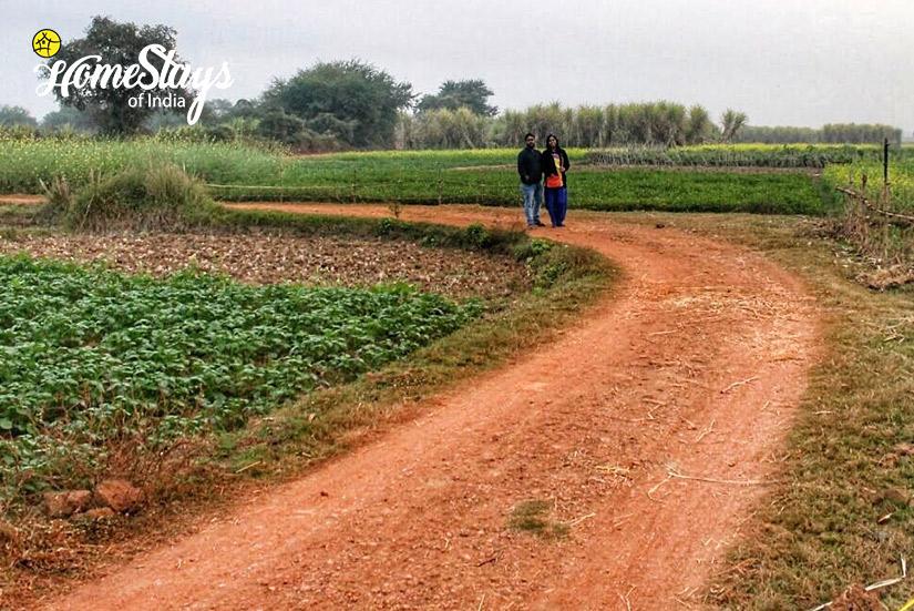 Walk_Singi Homestay