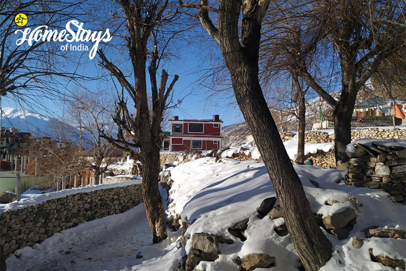 Winter-5_Nako Homestay-Spiti
