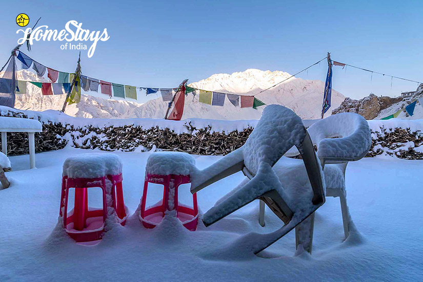 Winter2_Dhankar-Homestay-Spiti-Spiti