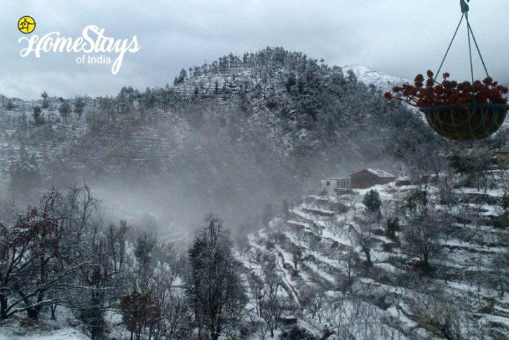 Winter_Nathuakhan-Homestay