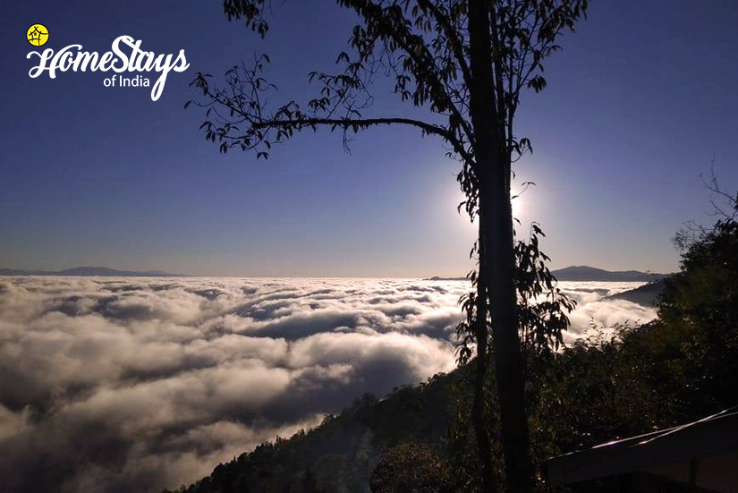 Cloudy-Morning_Rimbik-Homestay-Darjeeling