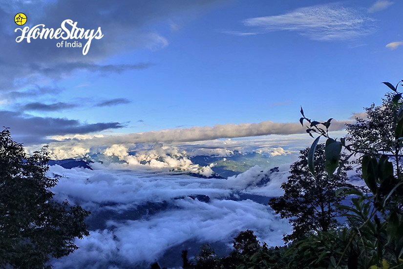 Landscape_Rimbik-Homestay-Darjeeling