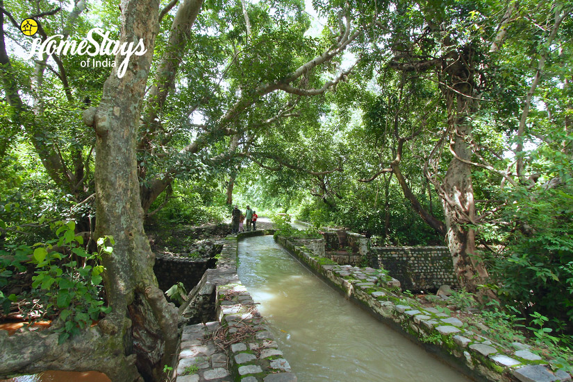 Irrigation Canal_Gebua Khas-Homestay-Corbett