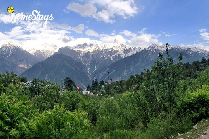 Neighborhood_Saryo-Homestay-Kalpa