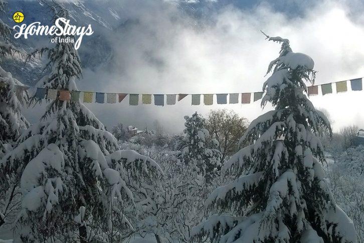 Winter2_Saryo-Homestay-Kalpa