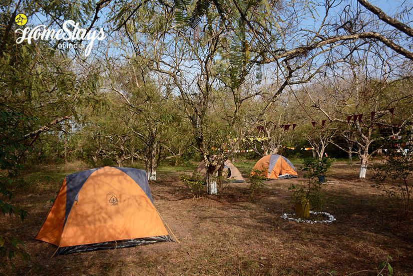Camping-Site_Pawalgarh-Homestay
