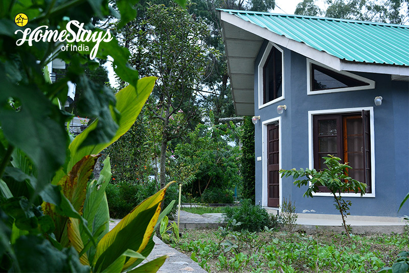 Cottage_Palampur Homestay