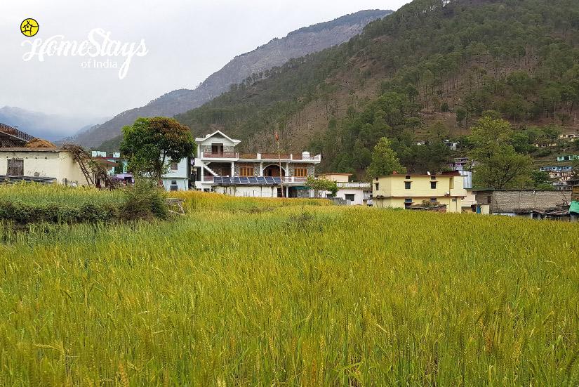 Gangori Homestay, Uttarkashi
