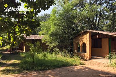 Nature1_Parsatola Ecostay-Kanha
