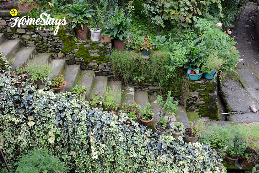 Downstairs-Bohrakote Homestay-Ramgarh