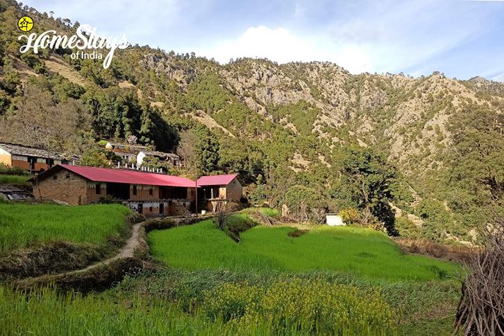 Farming_Srinagar Homestay-Uttarakhand