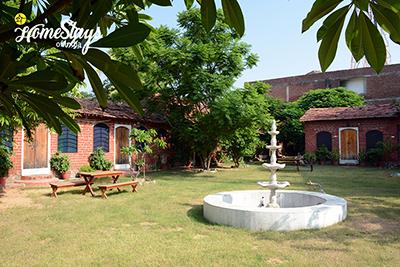 Garden-Pushkar Homestay