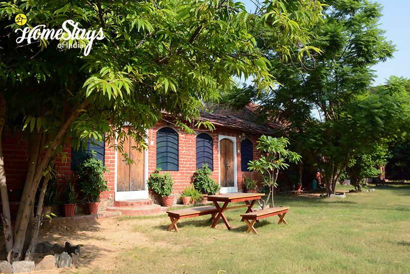 Garden2-Pushkar Homestay