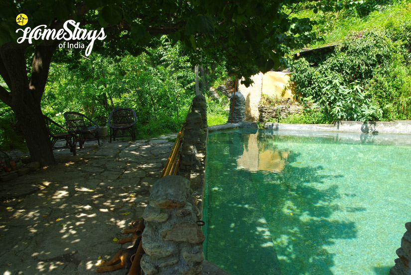 Pool-Chadiara-Heritage-Homestay
