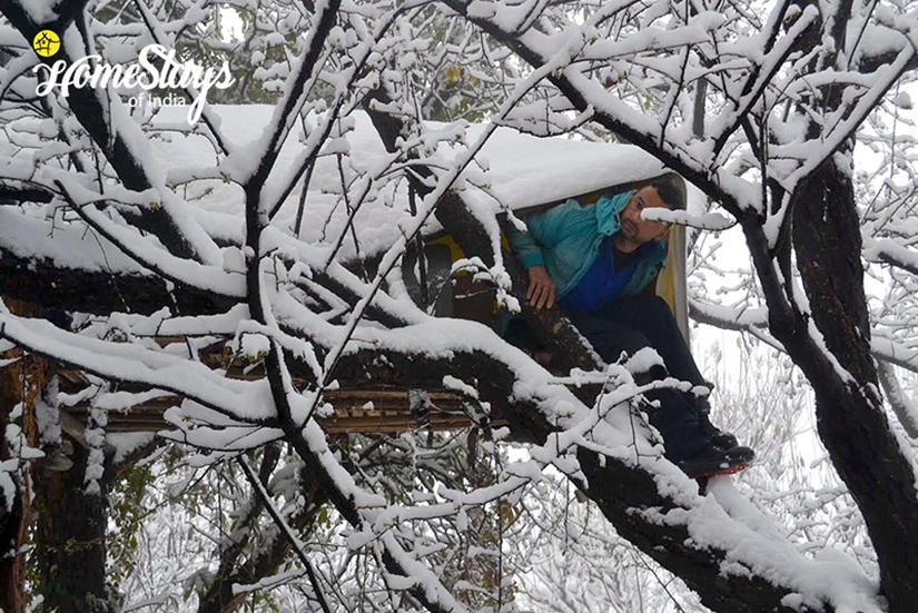Winter-4_Chaukori-Homestay