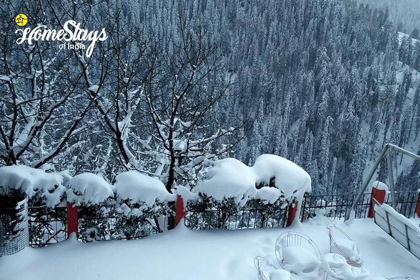 Winter3_Narkanda-Homestay
