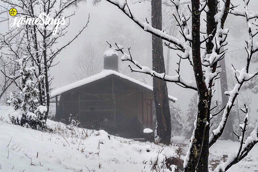 Winter_Chaukori-Homestay