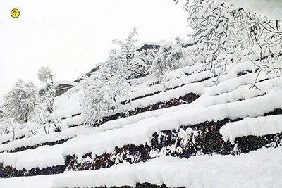 Winter-Kunr Village Homestay-Chamba