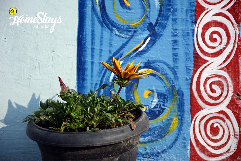Decoration-Gaula River Homestay-Alchaunaa