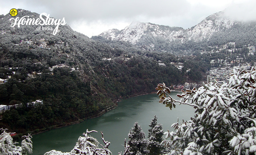 Lake View-TalliTal Lakeside Homestay-Nainital