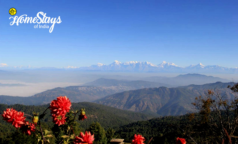 The View-Mukteshwar Temple Homestay